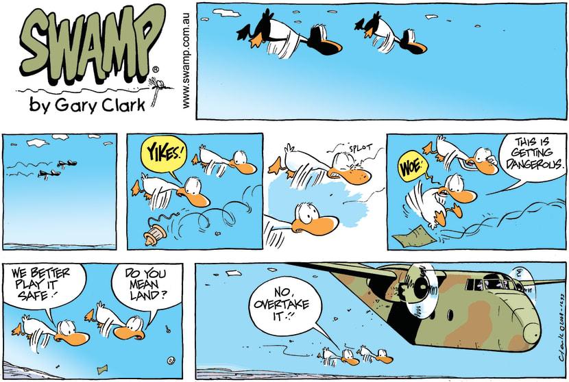 Swamp Cartoon - Overtaking LaneMay 4, 2008