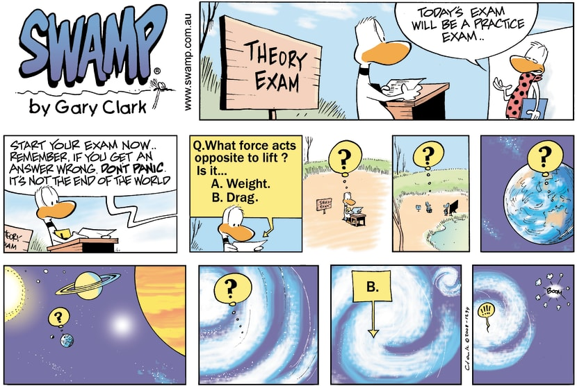 Swamp Cartoon - Theory Exam disasterMay 11, 2008