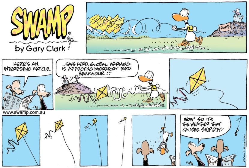 Swamp Cartoon - Up up and down!!!July 13, 2008