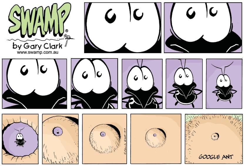 Swamp Cartoon - What on earth??November 2, 2008