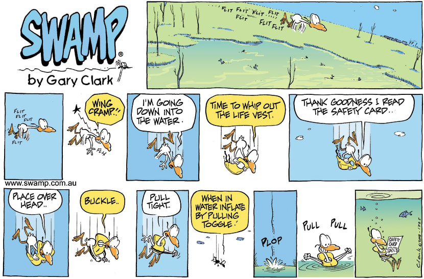 Swamp Cartoon - Emergency ProcedureDecember 21, 2008