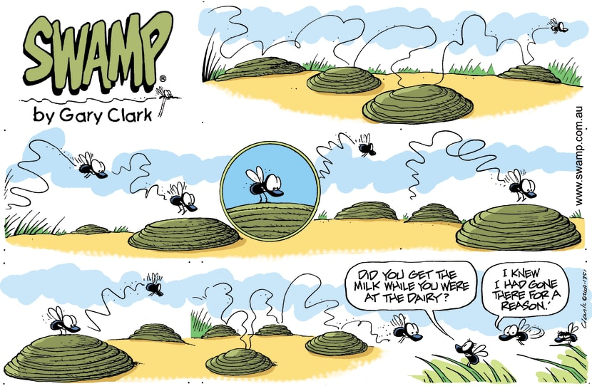 Swamp Cartoon - Long Way HomeJune 14, 2009