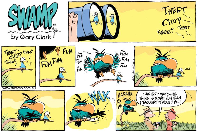Swamp Cartoon - Birdwatching FunAugust 2, 2009