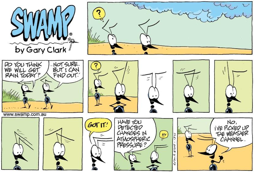 Swamp Cartoon - Radar RevisionNovember 29, 2009