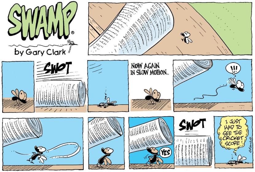 Swamp Cartoon - Sports FanaticFebruary 7, 2010