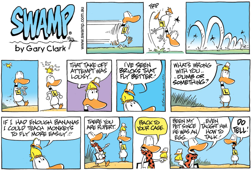 Swamp Cartoon - Everybody's and Expert!May 2, 2010