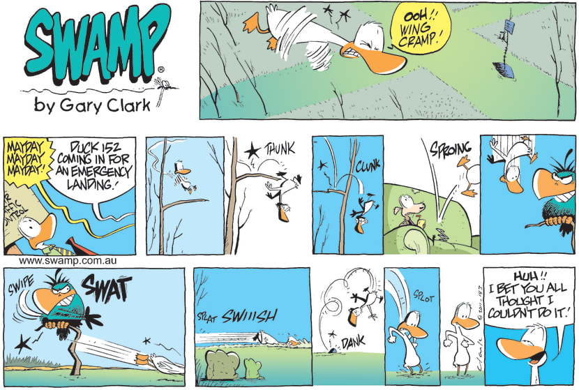 Swamp Cartoon - Pilot Emergency Landing ComicJanuary 30, 2011