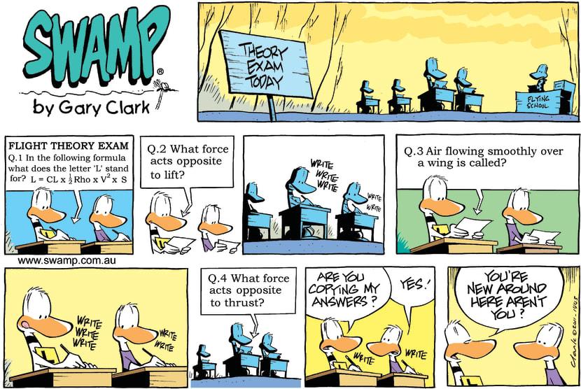 Swamp Cartoon - Tough QuestionsMarch 27, 2011