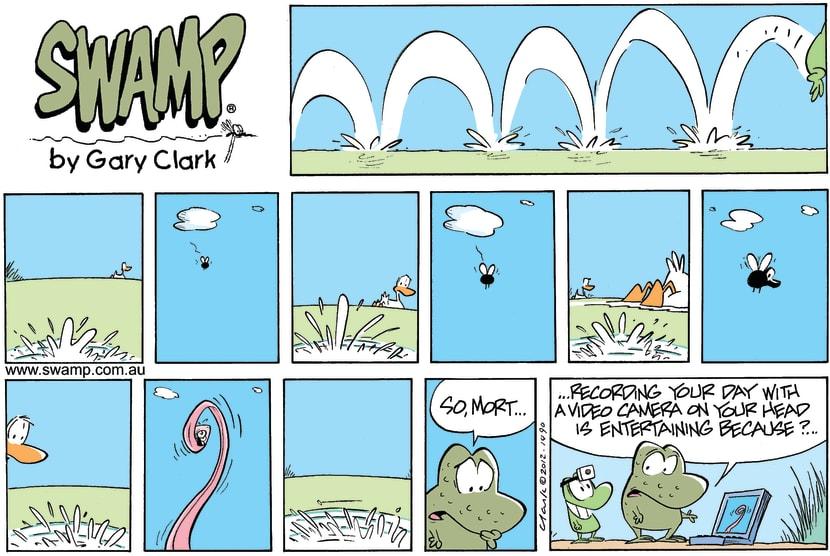 Swamp Cartoon - The eye of the beholder…February 26, 2012