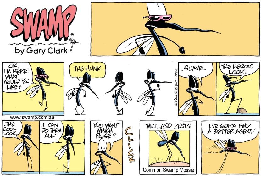 Swamp Cartoon - The Look ComicOctober 14, 2012