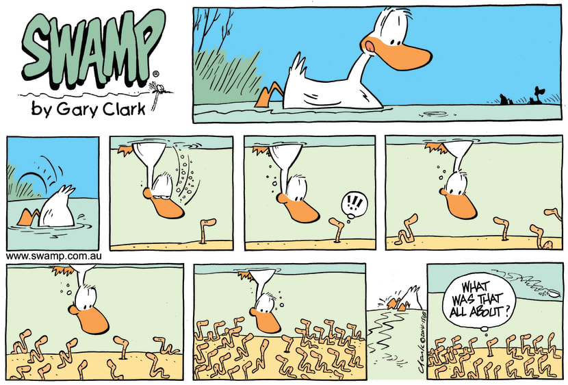 Swamp Cartoon - Duck v Worm ComicFebruary 2, 2014