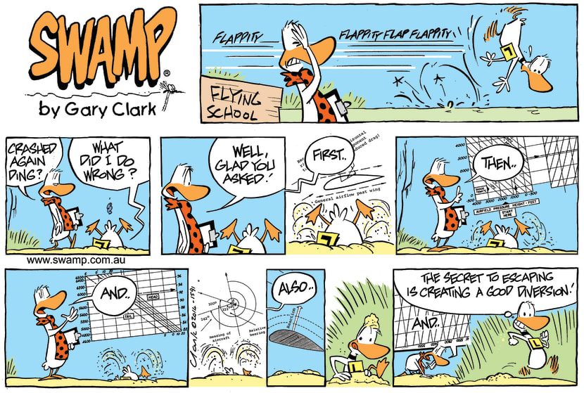 Swamp Cartoon - Crashed Again Ding ComicFebruary 23, 2014