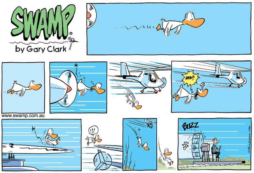 Swamp Cartoon - Duck Versus Aircraft ComicApril 27, 2014