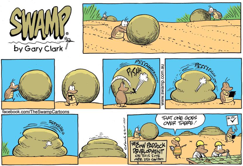 Swamp Cartoon - Dung Beetle Development ComicNovember 15, 2015