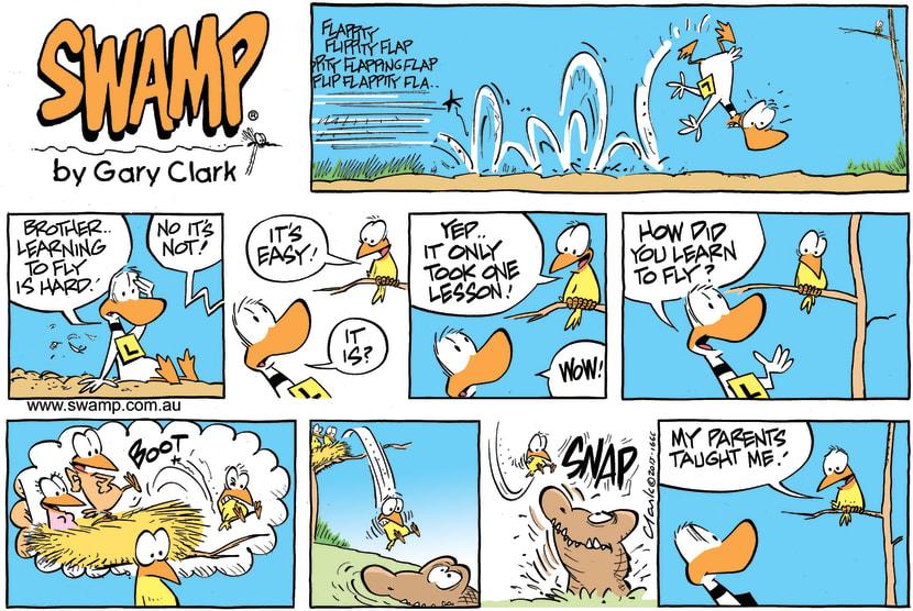 Swamp Cartoon - Ding Duck Bird Advice ComicNovember 22, 2015