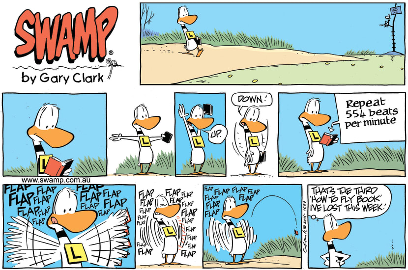 Swamp Cartoon - Ding Duck Fly Book ComicJuly 3, 2016