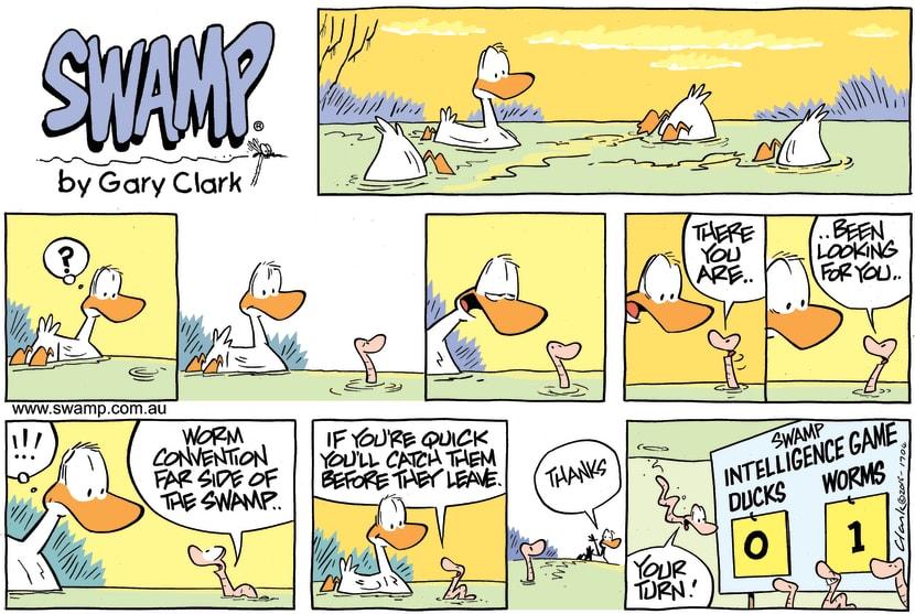 Swamp Cartoon - Ducks Vs Worms ComicAugust 7, 2016
