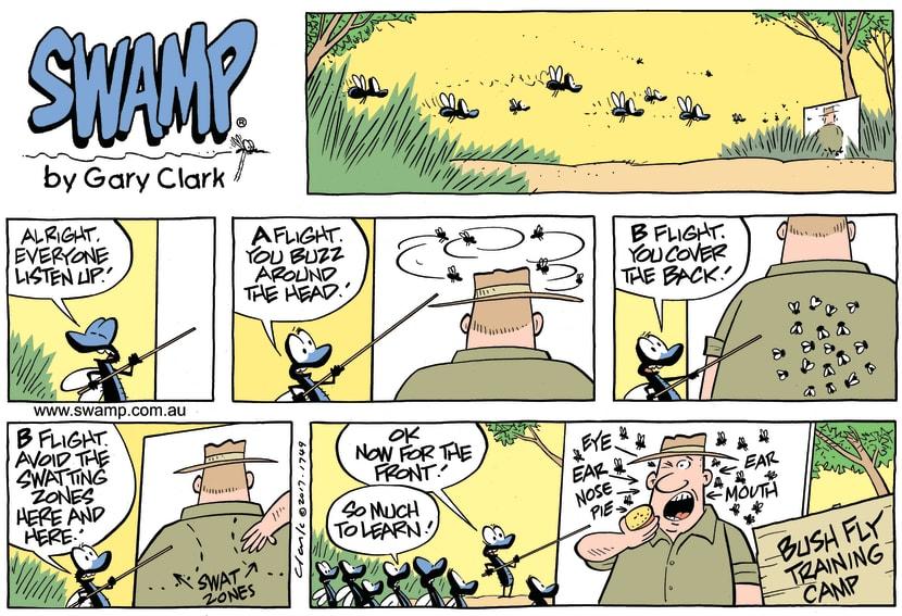 Swamp Cartoon - Bush Flies Training ComicJuly 2, 2017