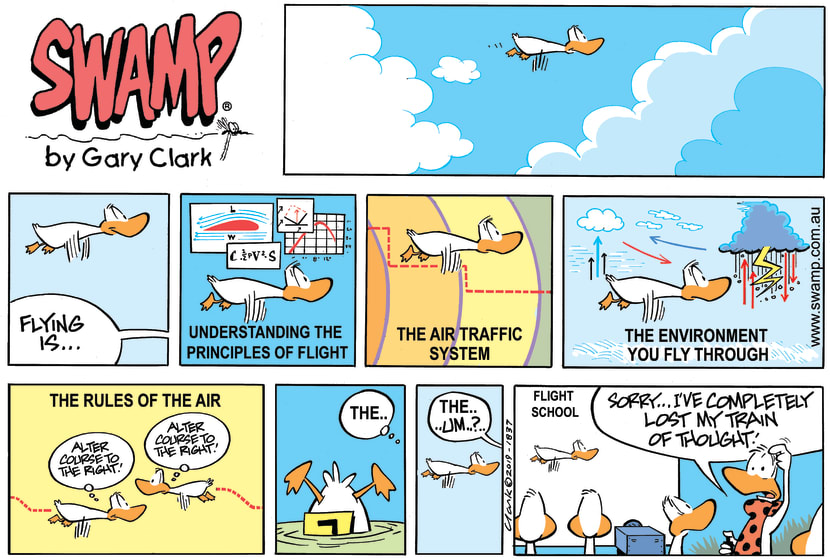 Swamp Cartoon - Flight Theory Instructor Befuddled ComicMarch 10, 2019