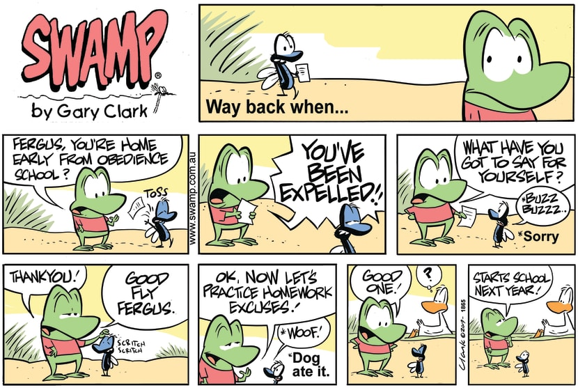Swamp Cartoon - Mort Frog Prepares Fergus For SchoolSeptember 29, 2019