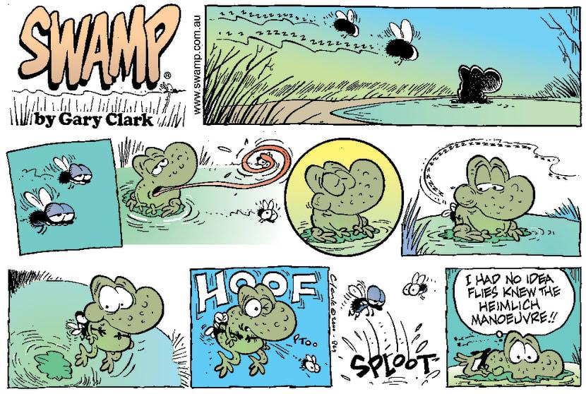 Swamp Cartoon - Protective FlyMarch 5, 2000