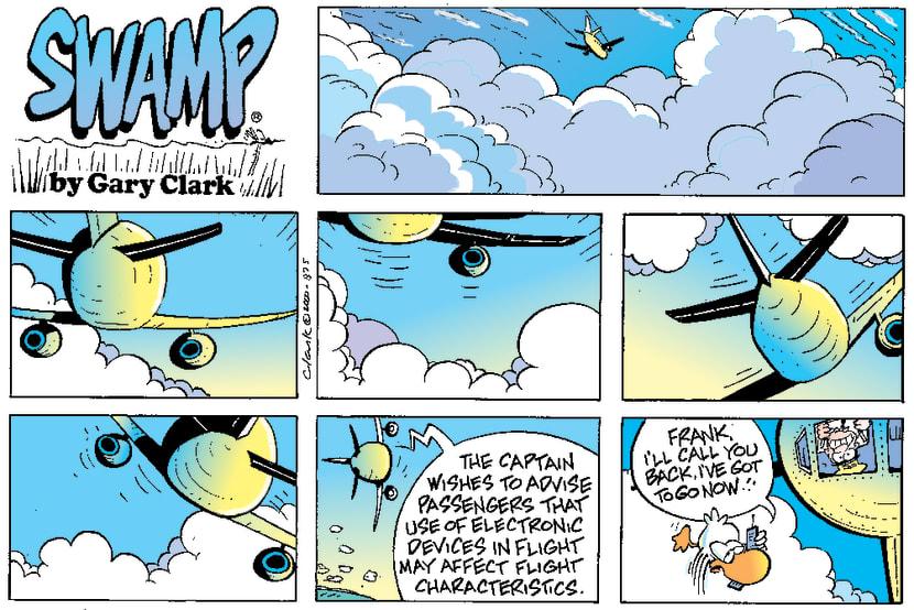 Swamp Cartoon - Electronic DisturbancesApril 16, 2000