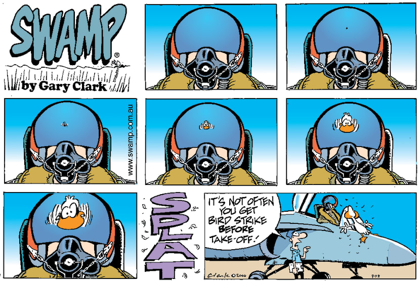 Swamp Cartoon - Birdstrike Before Take-offOctober 29, 2000