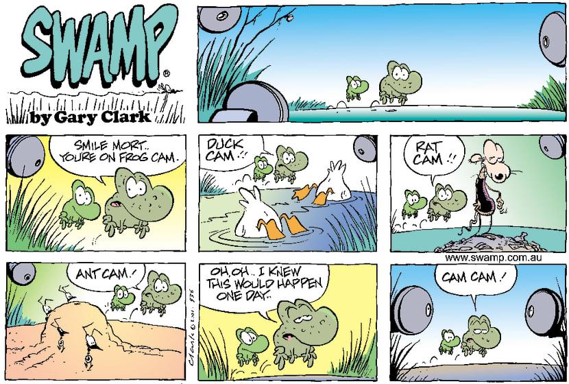 Swamp Cartoon - Swamp CamJune 17, 2001