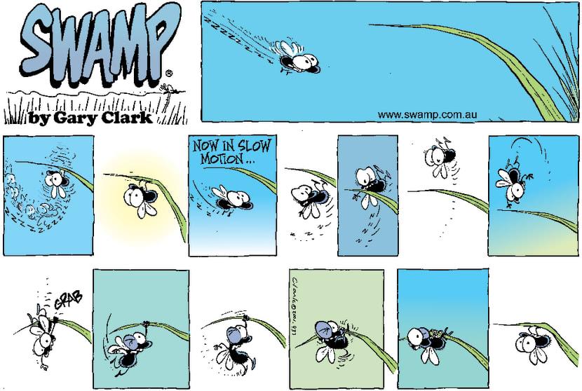 Swamp Cartoon - Flying TimesJune 24, 2001