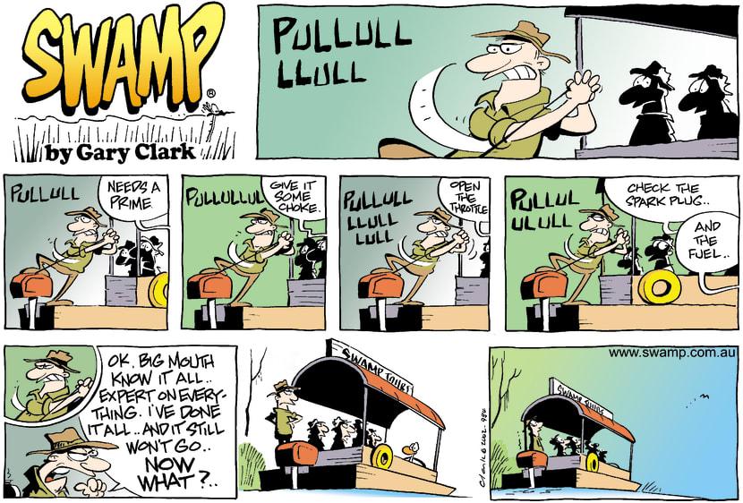 Swamp Cartoon - Tour TemperMay 19, 2002