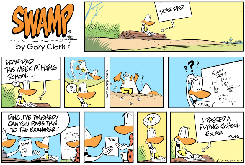 Swamp Cartoon - Ding Duck Week ComicAugust 11, 2019