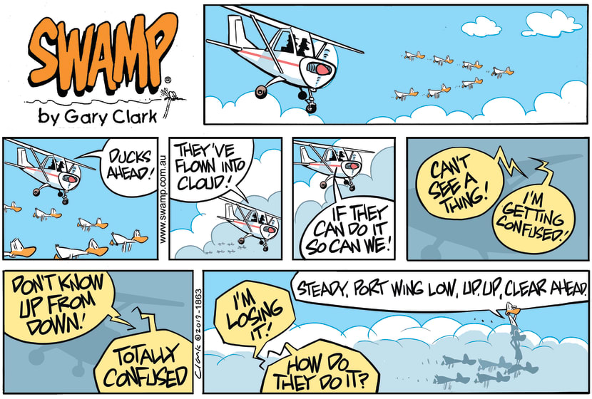 Swamp Cartoon - Aviator Ducks Fly into CloudSeptember 15, 2019