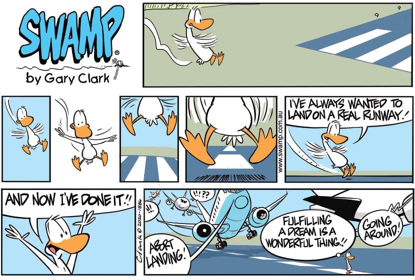 Swamp Cartoon - Aviator Duck Dream LandingFebruary 16, 2020