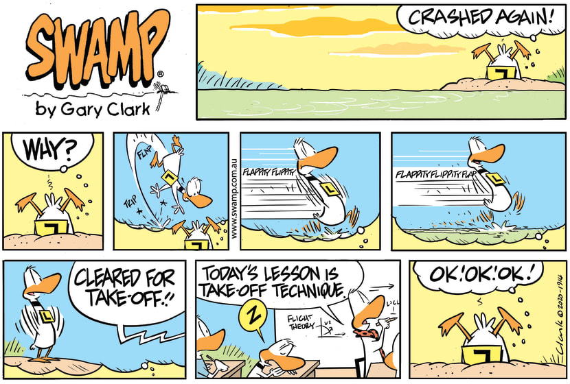 Swamp Cartoon - Flight Theory Lesson TechniqueAugust 30, 2020
