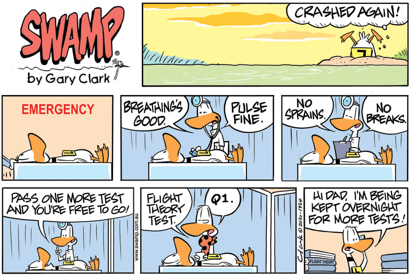 Swamp Cartoon - Ding Duck Emergency DepartmentNovember 8, 2020