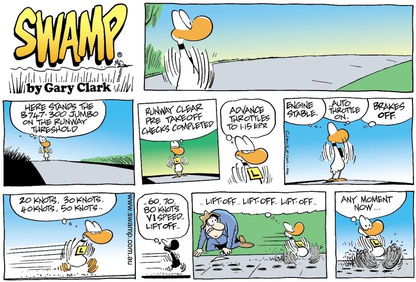 Swamp Cartoon - Ding Duck ChecklistJune 30, 2002