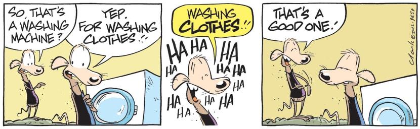 Swamp Cartoon - Chives Rat Washing MachineApril 7, 2021