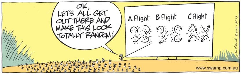 Swamp Cartoon - Flies Flight PlansApril 23, 2021