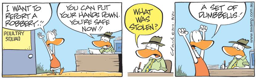Swamp Cartoon - Swamp Duck Report RobberyApril 24, 2021