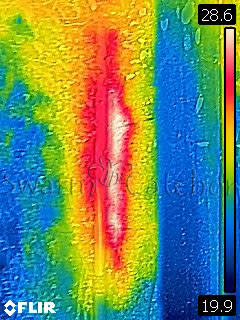 Bees in walls - Thermal image of outside stone wall - Rhonda bee removal