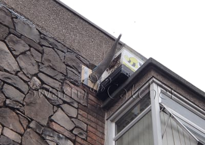 Bees in walls - Successful honey bee trap-out of bee nest unsuccessfully poisoned repeatedly