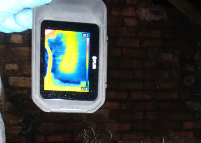 Bees in walls - Thermal image of bee nest in attic brick wall