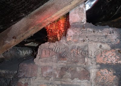 Bees in walls - Bee nest showing at top of attic brick wall