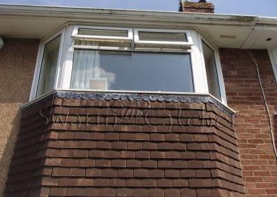 Bees in walls - Honey bee nest in wall beneath window