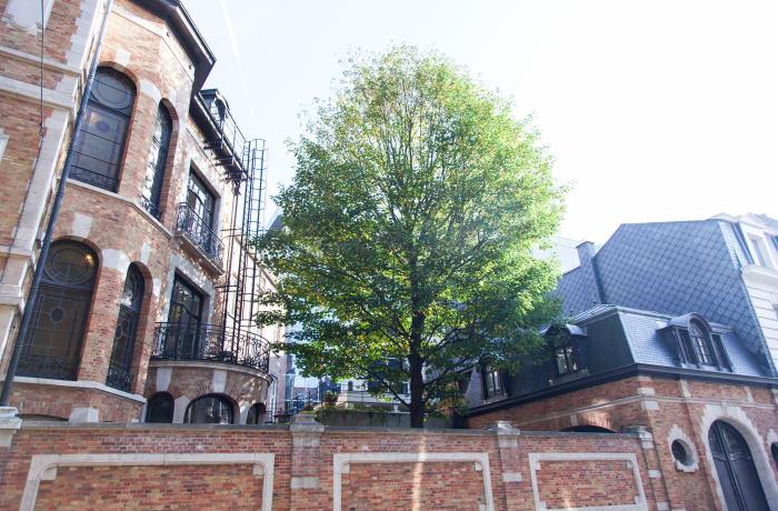 Apartment in Van Orley, Botanique - 23