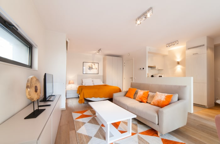 Apartment in Cygnes II, Flagey - 1