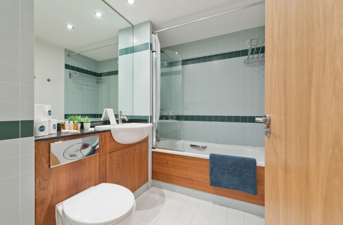 Apartment in Lovely Riverside II, Grand Canal Dock - 14