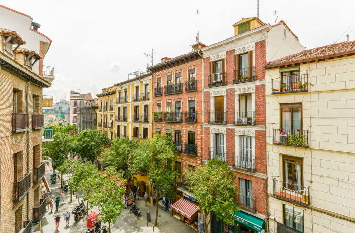 Apartment in Toledo Plaza Mayor, La Latina - 21