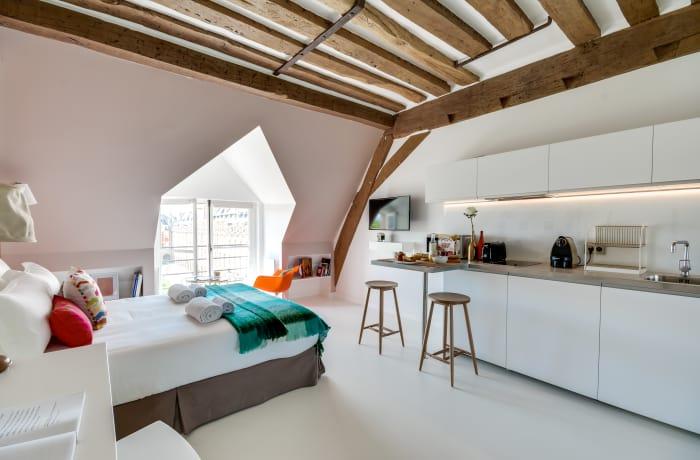 Apartment in Place des Vosges, Le Marais (3e) - 4