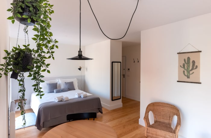 Apartment in Bandeira Studio, Santo Ildefonso - 1
